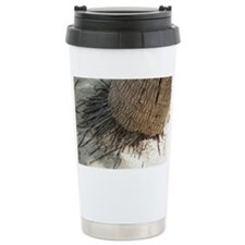 Trunk of a coconut palm Travel Mug