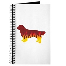 Sussex Flames Journal