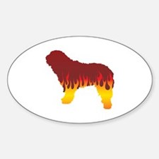 SWD Flames Oval Decal