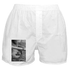 hanging sloth Boxer Shorts