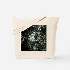 20130907_151008 Tote Bag