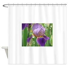 IMG_0554.JPG Shower Curtain
