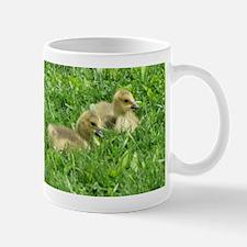 goslings laying close.jpg Mugs