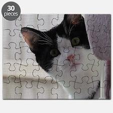 Peek a Cat Puzzle