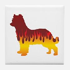 Pyrenean Flames Tile Coaster