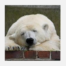Polar bear 003 Tile Coaster
