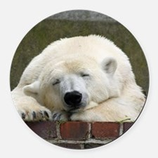Polar bear 003 Round Car Magnet