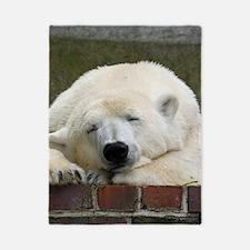 Polar bear 003 Twin Duvet