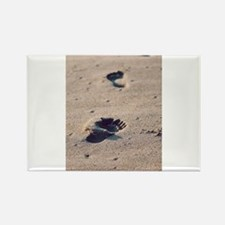 Footprints In The Sand Magnets