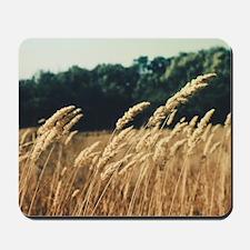Wheat Field Mousepad