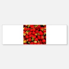 Strawberries Bumper Bumper Bumper Sticker