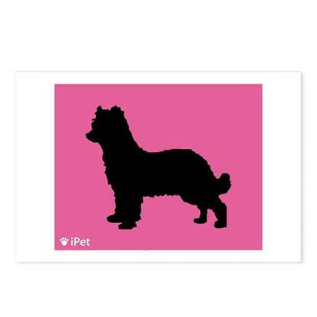 Pyrenean iPet Postcards (Package of 8)
