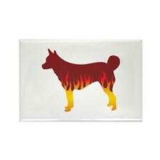 Lundehund Flames Rectangle Magnet (100 pack)