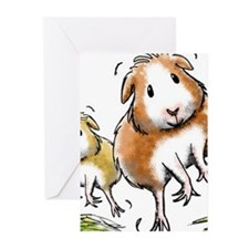 Cute Guinea Greeting Cards (Pk of 20)
