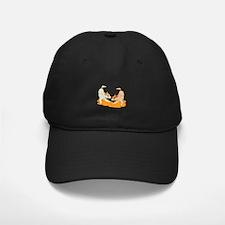 Two heeler pups playing Baseball Hat