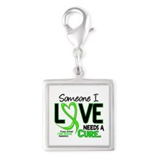 Lyme Disease Needs a Cure 2 Silver Square Charm