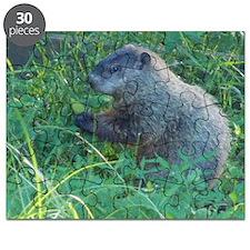 Praying Groundhog Puzzle