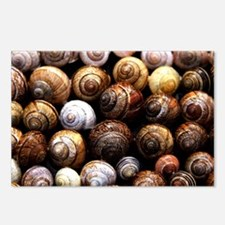 Snail Shell Pattern Postcards (Package of 8)