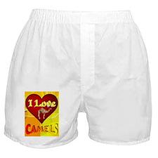 I Love Camels Boxer Shorts