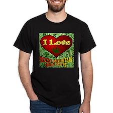 I Love Rocky Mountain High State T-Shirt