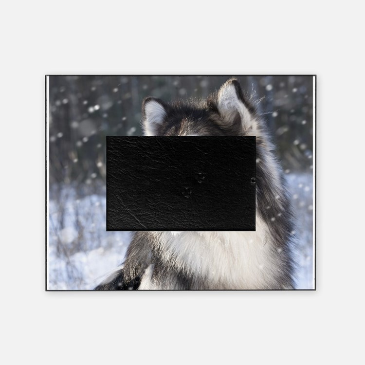 Call of the Wild Picture Frame