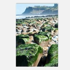 View towards Whitby from  Postcards (Package of 8)