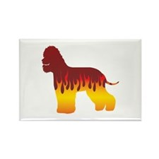Spaniel Flames Rectangle Magnet (100 pack)