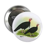 Black Turkeys Button
