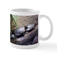 Turtles Mugs