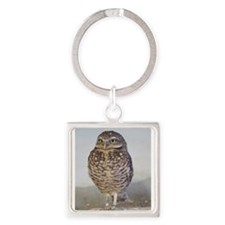 Burrowing owl Keychains