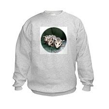 Baby Possum Sweatshirt