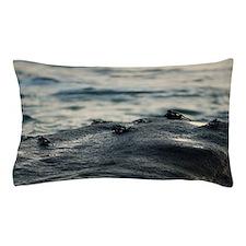 Intertidal marine crabs Pillow Case