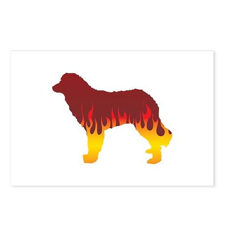 Estrela Flames Postcards (Package of 8)