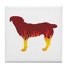 Entlebucher Flames Tile Coaster