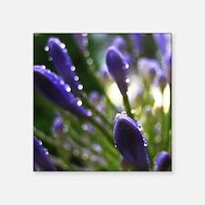 """Purple Raindrops Square Sticker 3"""" x 3"""""""