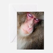 sleeping monkey Greeting Card