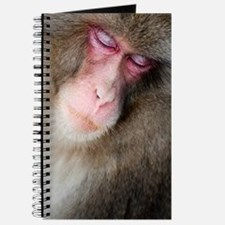 sleeping monkey Journal