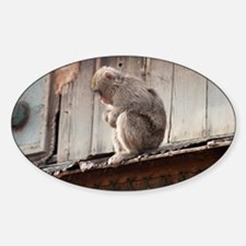 monkey on the roof Sticker (Oval)