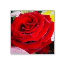 "Rose Square Sticker 3"" x 3"""