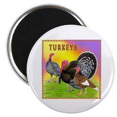 """Assorted Turkeys2 2.25"""" Magnet (100 pack)"""