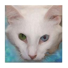 Funny Blue eyed cat Tile Coaster