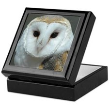 Captivating Owl Keepsake Box