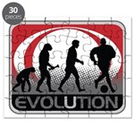 Evolution Soccer Puzzle