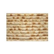 Cute Funny passover Rectangle Magnet