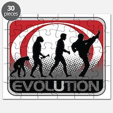 Evolution Martial Arts Puzzle