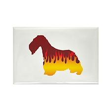 Cesky Flames Rectangle Magnet (100 pack)
