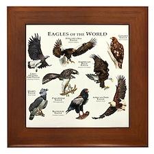 Eagles of the World Framed Tile