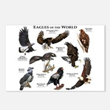 Eagles of the World Postcards (Package of 8)