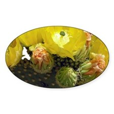 YELLOW CACTUS FLOWERS Decal