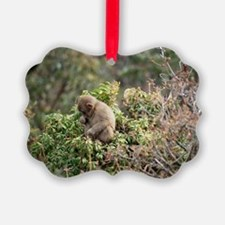 tree monkey Ornament